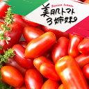 【ポイント10倍】加熱で倍うまい!イタリアントマト 2kg ミニトマト イタリアントマト 加熱用トマト 調理用トマト とまと めぐり菜