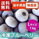 【送料無料】【28年産】【無農薬栽培】遠野で育った大粒の冷凍ブルーベリー1kg(Lサイズ)【がんばろ