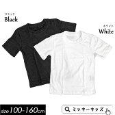 定番!パッケージ入り無地半袖Tシャツ100cm 110cm 120cm 130cm 140cm 150cm 160cm白色・黒色
