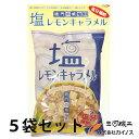 【熱中症対策】塩キャラメル 塩レモンキャラメル 1kg 5袋...