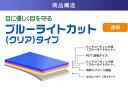 ZOOM Handy Video Recorder Q2n 用 【目に優しいブルーライトカット クリアタイプ】 液晶保護フィルム ★