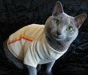 Tシャツバージョンのジャージです。このデザインなら可愛すぎるのが苦手な方でもOKですね。Tシャツジャージ猫&犬対応【楽天ランキング入賞商品】【メール便なら送料210円!!】