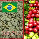 【生豆】ブルボンアマレロ ナチュラル1kg
