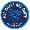 パタゴニア ダム キャンペーン ステッカー Patagonia ALL DAMS ARE DIRTY BLUE HEART シール デカール 非売品 稀少 メール便 同梱可 新品