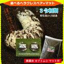 ☆カブトムシ☆が選べる!ヘラクレスオオカブト3令初期幼虫オスメスペア+カブトムシ マット(昆虫マット