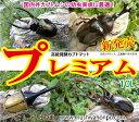 『カブトムシ幼虫のエサ』高級発酵カブト マット(昆虫マット)[プレミアム]10L!