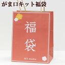 ◆数量限定◆ 【予約販売】がま口 手作りキット 福袋 キット6点+口金6点+道具5点 宅配送