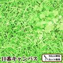 【ママ割P5倍】KOKKA 10番キャンバス 生地 芝生でゴ...