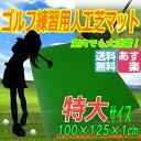 ゴルフマット GOLF スタンス練習用 125cm 人工芝 ショットマット ゴルフネット マット1.25M-CP