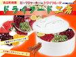 【送料無料】【あす楽対応】ドライフード工房 レシピ付き 果物 野菜乾燥器 食品乾燥機 FDS-77【05P23Apr16】