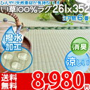 【ポイント2倍】【送料無料】■い草 6畳カーペット