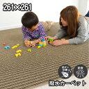 撥水カーペット 4.5畳4.5帖 (防汚・防ダニ・抗菌・床暖...