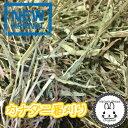 チモシー プレミアムカナダ二番刈りチモシー  3kg うさぎ、モルモット、チンチラ、テグー に 【RCP】 うさぎ 牧草 チモシー 格安うさぎの牧草 楽天市場 牧草 楽天 市場 牧草市場