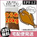 (送料無料※宅配) ひらめEPF12(浮上性)20kg/コイのごはん・熱帯魚の餌・アロワナのエサ(金魚小屋-希-福岡)