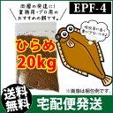 (送料無料※宅配) ひらめEPF4(浮上性)20kg/コイのごはん・熱帯魚の餌・アロワナのエサ(金魚小屋-希-福岡)