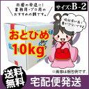(есб╝елб╝─╛┴ў)╞№└╢┤▌╣╚╗Ї╬┴дкд╚д╥дсB2(0.36б┴0.62mm)10kg/─└╣▀└н есе└елд╬д┤д╧дє ├╒╡√д╬▒┬ е░е├е╘б╝д╬еие╡(╢т╡√╛о▓░-┤ї-╩б▓м)