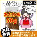 (送料無料※メール便)日清丸紅飼料おとひめS2(沈降性50g...