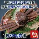 【送料無料】タグ付き 特上松葉ガニ(ズワイガニ) 活 大サイズ1枚(800g前後)【かに/カニ/蟹】