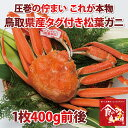【送料無料】ブランドタグ付き 特上松葉ガニ 茹で 小サイズ1枚(活カニ時400g前後)【かに/カニ/蟹】