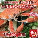 ブランドタグ付き 特上松葉ガニ 茹で 中サイズ1枚(活カニ時600g前後)【かに/カニ/蟹】