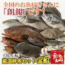 まずはお試し 厳選鮮魚セット宝船3780円コース 送料無料