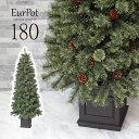 クリスマスツリー おしゃれ 北欧 180cm 高級 ドイツトウヒツリー オーナメントセット なし ツリー ヌードツリー スリム ornament Xmas tree Eurpot