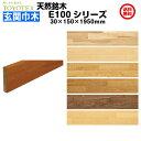【後払い不可】 東洋テックス ダイナクティブフロアー(天然銘木) E100シリーズ用 玄関巾木 (突板) 30×150×1950mm