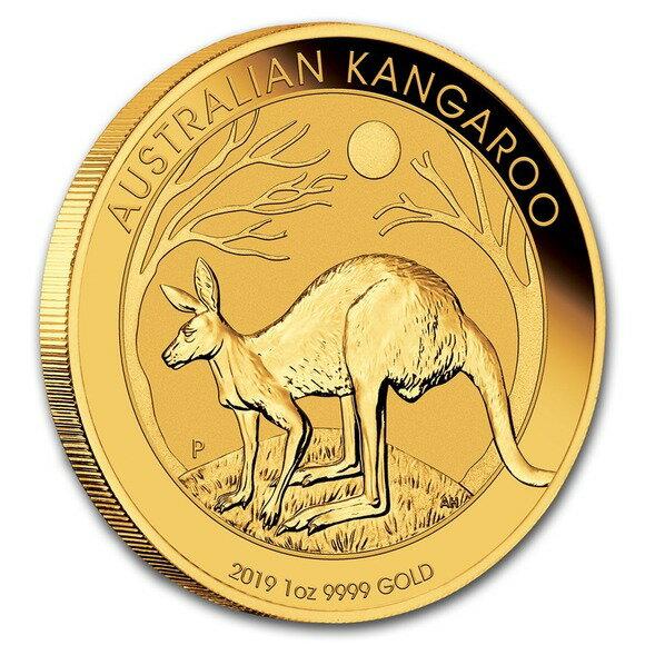 2019 オーストラリア カンガルー金貨 1オンス5枚セット 32mmクリアケース付き 新品未使用