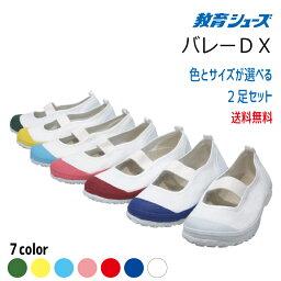 【生活応援価格DX!】上履き 教育バレーDX 2足セット 教育シューズ