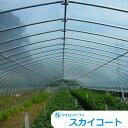 農PO メーター単位切売り タキロンシーアイ スカイコート5 幅 740cm×厚み0.075mm