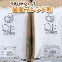 お米10kg(5kg×2) 【送料無料】家庭応援米 安い 価...