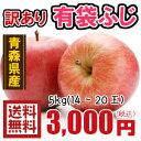 青森りんご☆送料無料☆訳あり有袋ふじ5キロ14〜20玉