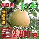 青森りんご☆送料無料☆家庭用トキ5キロ14〜20玉 発送は10月1日頃から