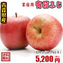 青森りんご☆送料無料☆家庭用有袋ふじ10キロ28-40玉