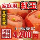 青森りんご☆送料無料☆家庭用紅玉8〜9キロ56玉
