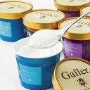ガレープレミアムアイスクリームセットGL-EG12【直送品】【Y便】