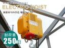 電動ウインチ 家庭用100V対応 強力小型ホイスト 50Hz 最大能力250kg 出張先や現場ですぐに使える移動式 吊り下げタイプ 60日安心保証付