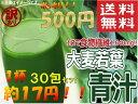 【 送料無料 】 訳あり 大麦若葉 青汁 分包タイプ3g×30袋入り 500円 ポッキリ 送料無料 1杯約17円 ポスト投函便 ポイント 消化