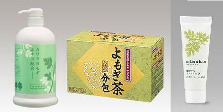 お肌うるおいよもぎセット(無農薬) 送料無料(アルテボディ・アルテナチュラル100g・国産よもぎ茶50パック(健康茶)おまけ付