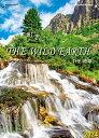カレンダー 名入れカレンダー世界風景(THE・地球)300冊令和3年 2021年