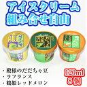 山形アイスクリームセット(8個)【フルーツアイス 東北 山形...