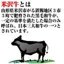 米沢牛ポテトチップ 画像3