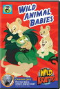 SALE OFF!新品北米版DVD!Wild Kratts: Wild Animal Babies!<ワイルド・クラッツ>