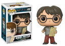 ■予約■[FUNKO(ファンコ)] Funko Pop! Movies: Harry Potter S4 - Harry W/ Marauders Map