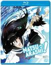 新品北米版Blu-ray!【夏のあらし!】全13話