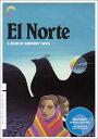 ����������Blu-ray���ڥ��롦�Υ�� ��«���ϡ� El Norte: Criterion Collection (Blu-ray)��