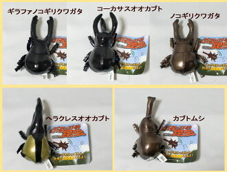 59% Off 5 pattern boys stag beetles stuffed insects cannot be fs3gm