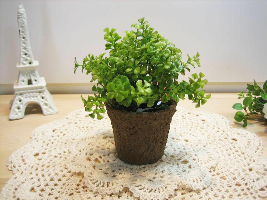 光触媒 ミニグリーン【ファンシェイプ】お手入れ不要 観葉植物 消臭効果 プレゼント ギフト