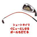 【短尺アイアンタイプ】ムチのようにしなる柔らかいシャフトでプロスイングを身につける ボールも打てる練習機 広田ゴルフ ロジャーキング スイングドクター ショート アイアンタイプ 02P05Nov16