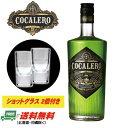 (数量限定セール)【送料無料】コカレロ COCALERO 29度 700ml (ショットグラス 2個付